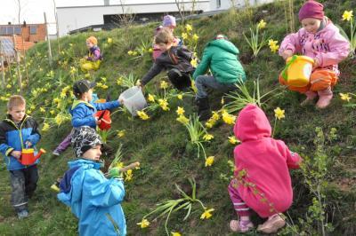 Der Zuschuss von 1000 Euro für den Besuch von Kinderbetreuungseinrichtungen wird für Puschendorfer Kinder um weitere zwei Jahre verlängert, beschloss der Gemeinderat.