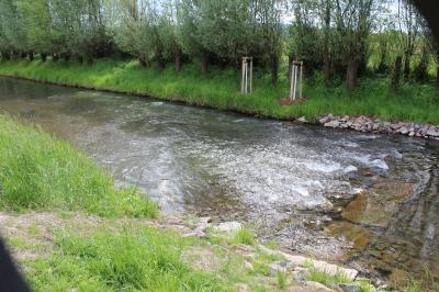Foto: G. Jarosz; eingebauter Strömungslenker  mit Strömungsrinne und Kehrwasser