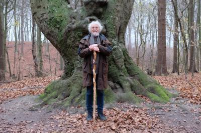 """Folgen Sie Prof. Dr. Knapp durch Jasmunds """"Alten Buchenwald"""" in unserem neuen Welterbefilm."""