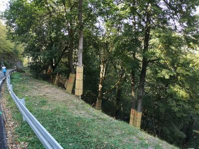 +++ Bestrebungen erfolgreich: Planungen auf der L235 zwischen Mägdesprung und Harzgerode werden fortgesetzt +++