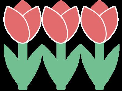 Bild der Meldung: Die Tulpe im Frühling