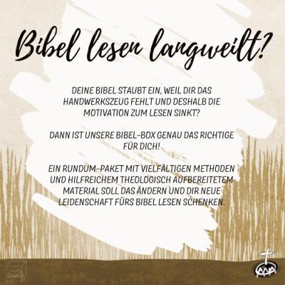 Bibel-Box für Junge Leute