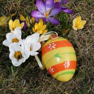 Foto zur Meldung: Spaziergang in den Frühling