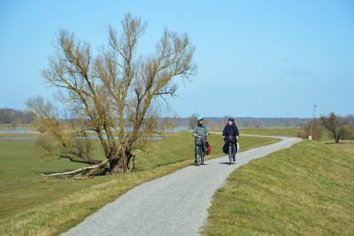 RadfahrerInnen auf dem Elberadweg bei Wittenberge I Foto: Martin Ferch