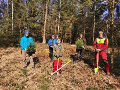 Fleißige Helfer beim Projekt zur Aufforstung des Dormitzer Gemeindewaldes