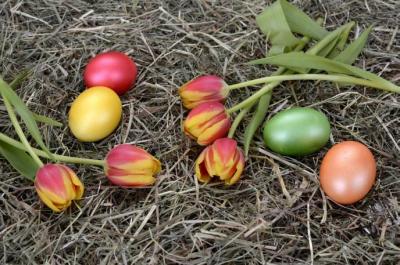 Verschiebung der Hausmüll- und Bioabfallentsorgung anlässlich der Osterfeiertage 2021