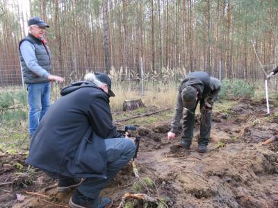 Foto zur Meldung: Waldumbau in Borkheide
