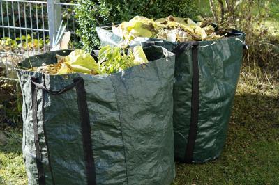 In Maintal gibt es verschiedene Möglichkeiten, um Gartenabfälle zu entsorgen. Foto: Pixabay