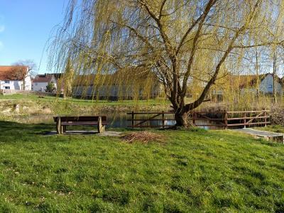 Neues Geländer für den Teich