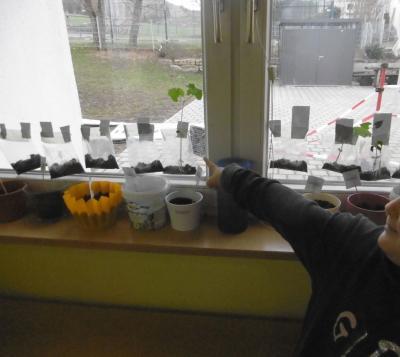 Die Frühlingszeit im Kindergarten Hegelstraße