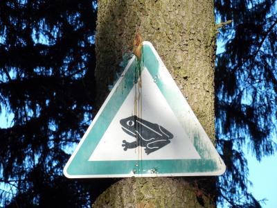 Schild Krötenwanderung (Symbolfoto)