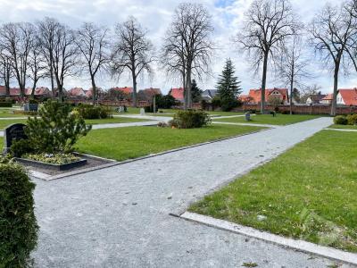 Auf dem Grabfeld D auf dem städtischen Friedhof können Angehörige von Opfern der Corona-Pandemie ihrer Verstorbenen gedenken. Foto: Katja Zeiger