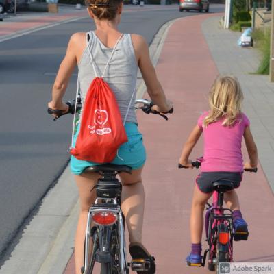 Vorschaubild zur Meldung: Leitziele für Verkehrskonzept beschlossen