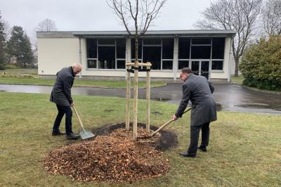 Vorsitzender der Stadtverordnetenversammlung Uwe Pielenz und Bürgermeister Helmut Wenzel pflanzen in Gedenken an die Corona-Verstorbenen einen Baum auf dem Hauptfriedhof in Zerkwitz.