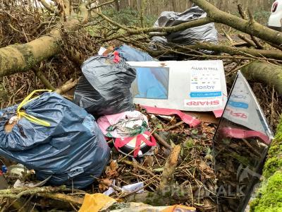 Hausmüll aller Art, Verpackungen und sogar einen Flachbildfernseher hat ein Bürger hier einfach im Wald entsorgt. Foto: Rommy Malorny