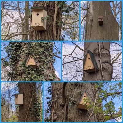 Vogelhaus-Patenschaften