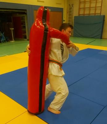 Foto zur Meldung: Judosparte SC Hemmingen geht Online neue Wege