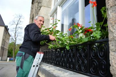 Jörg Hartwig bringt die Blumenkästen mit den Geranien an. Auch die neuen Blumengitter können sich sehen lassen  I Foto: Martin Ferch