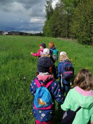 Wanderung statt Online-Training für die Montagskinder