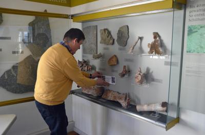 Direktor Dr. R. Werneburg beim Platzieren der Beschilderung