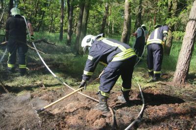 Foto zu Meldung: Waldbrand zwischen Rietz und Schmerzke