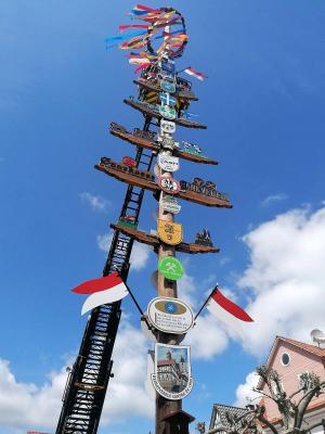 Seit kurzer Zeit ziert der Sontraer Maibaum wieder den Marktplatz der Berg- und Hänselstadt Sontra.