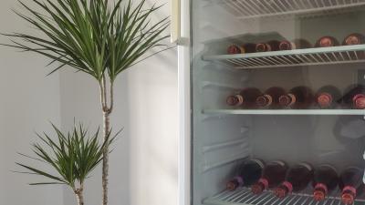 Gefüllter Kühlschrank mit Glastür