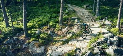 In Sontra wird ein Mountainbike Trail entwickelt, Bildrechte: RadQuartier GmbH