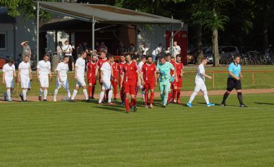 Bild der Meldung: Der Ball rollt wieder beim VfB!