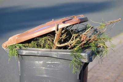 Foto zur Meldung: Das Ordnungsamt informiert zur Grünschnitt- und Laubentsorgung der Gemeinden ab dem 01.01.2022