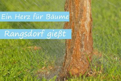 Bitte: Bewässerung der Bäume