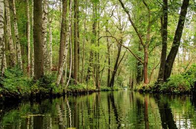 Fließ im Spreewald; Quelle: Pixabay
