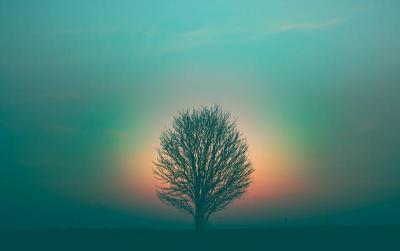 © Marek Piwnicki auf Unsplash.com