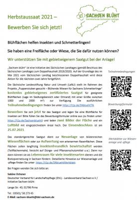 """Sächsischer Landtag verlängert die Aktion """"Sachsen blüht""""!"""