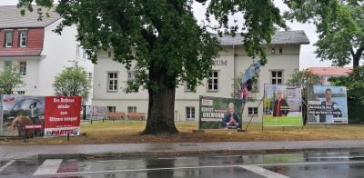 Wahlplakate in Königs Wusterhausen. Foto: Dörthe Ziemer