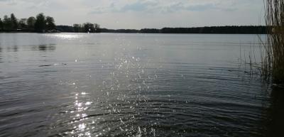 Im Naturpark Dahme-Heideseen, hier der Klein Köriser See. Foto: Dörthe Ziemer