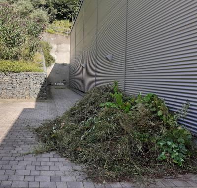 Arbeitseinsatz rund um die Bermbachtal – Halle der Stadt Ruhla