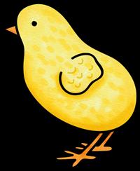 Ich wollt ich wär ein Huhn - Küken im Offenen Ganztag
