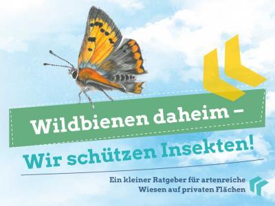 Neuer Ratgeber: Wildbienen daheim – Wir schützen Insekten!