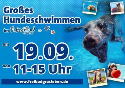 Hundeschwimmen in Grasleben mit Impfaktion des Landkreises Helmstedt – kostenfreier Eintritt für Impfwillige