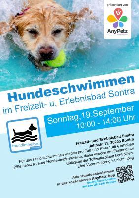 Hundeschwimmen im Freizeit- und Erlebnisbad Sontra
