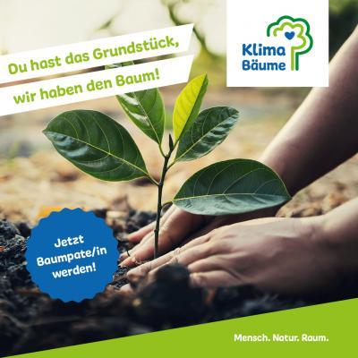 Foto zur Meldung: Klimaschutz im eigenen Garten – Die Gemeinde Holzwickede sucht Baumpaten/innen für kostenfreie Obstbäume