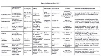 Apfelbaum-Pflanzaktion 2021