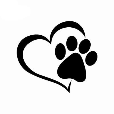 """Projekt """"Kinder helfen Tieren in Not"""""""