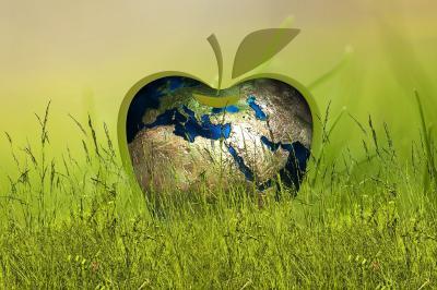 Foto zur Meldung: Markt der Nachhaltigkeit – Anfassen, Anschauen und Ausprobieren