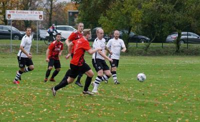 Bild der Meldung: VfB Cottbus mit Niederlage in Altdöbern
