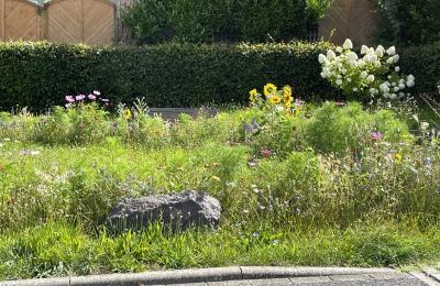 Preisverleihung Vorgartenwettbewerb am 30.09.2021
