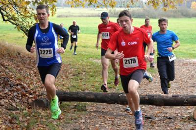 Foto zur Meldung: Sportclub Laage bittet zu den Landesmeisterschaften im Crosslauf