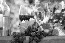 Weinprobe des TSV Biebelried