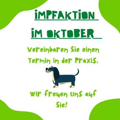 IMPAKTION IM OKTOBER